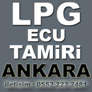 Lpg Ecu Tamiri Urfa