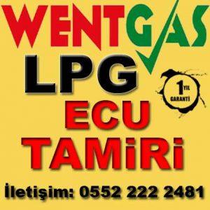 Ecu LPG Tamiri Wentgas