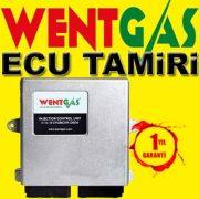 LPG Ecu Tamiri Wentgas
