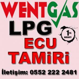 Wentgas LPG Ecu Tamir