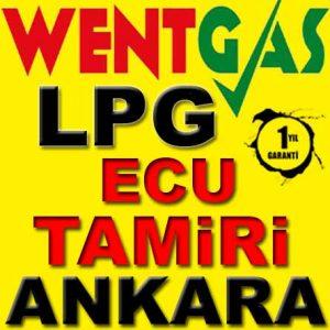 Wentgas LPG Ecu Tamircisi