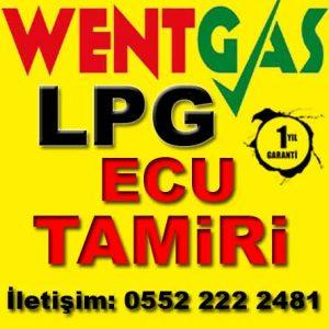 Wentgas LPG Ecu Tamiri Ankara