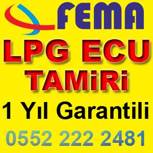 Fema LPG Ecu Tamiri Garantili
