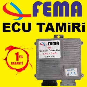 Fema LPG Ecu Tamiri