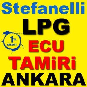 Stefanelli LPG Beyin Tamiri
